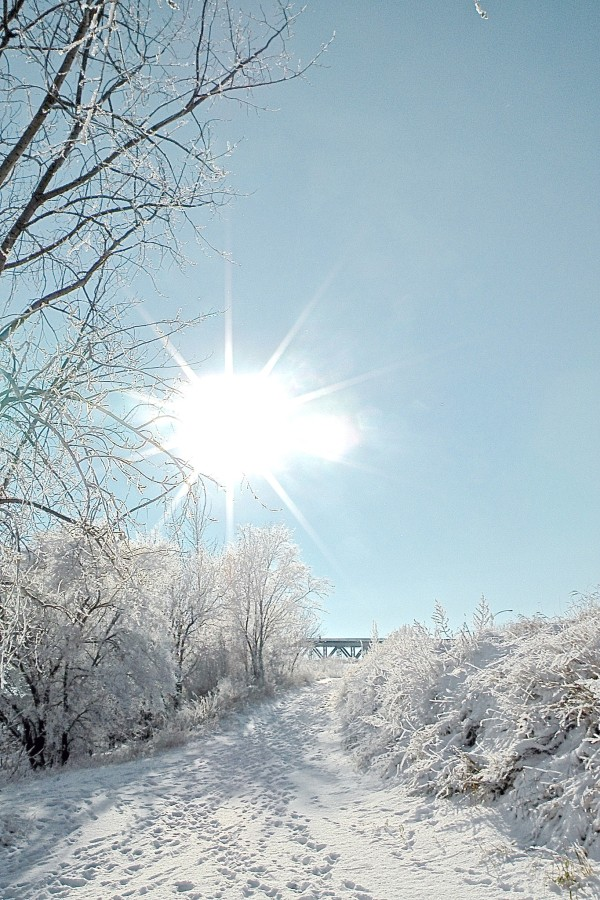 Saskatoon_Bridge_Winter_15.jpg